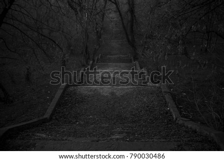 old stairs leading to the gloomy forest