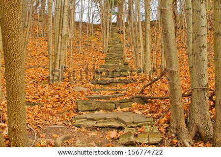 Old Stone Stairway in the Fall - stock photo