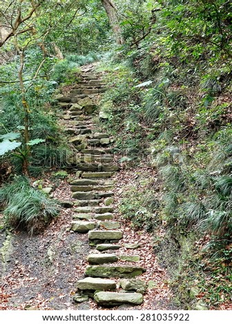 Old stone steps leading uphill in a lush green forest