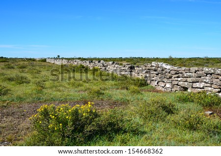 Old stonewall at the great alvar plain on the island Oland in Sweden - stock photo