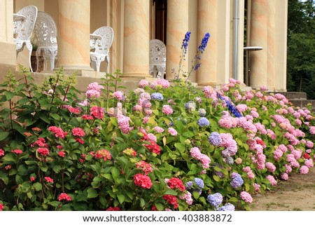 Old style chairs and table on the terrace of the castle and Hydrangea - stock photo