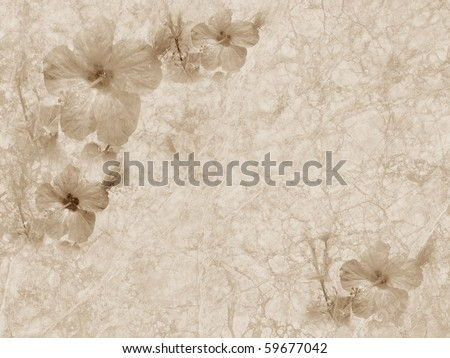 Old style grunge background with hibiscus flower, copy space - stock photo