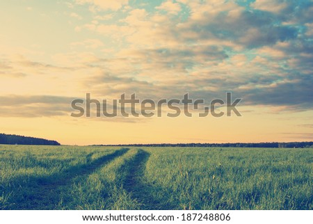 old style landscape with grass field and dramatic sky at sunset instagram nashville tone - stock photo