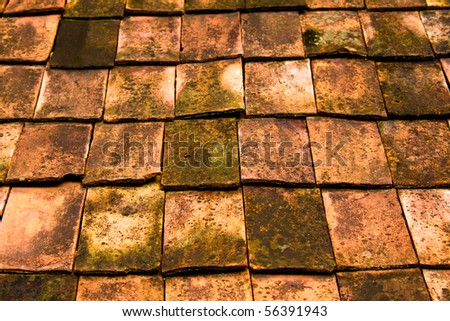 Old Tiled Roof Texture
