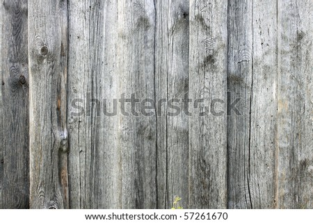 old timber plank - stock photo