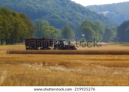 Old tractor on a field  - stock photo