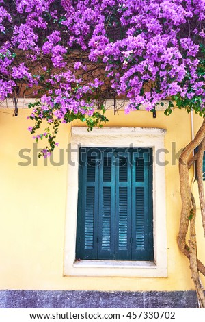 Old traditional greek house and window with flowers of bougainvillea, Corfu, Greece