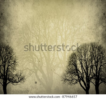 old trees background in autumn with texture