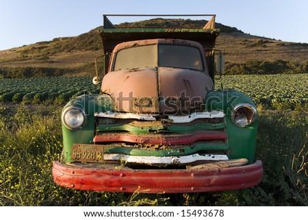 Old truck in an artichoke field near Santa Cruz, California. - stock photo