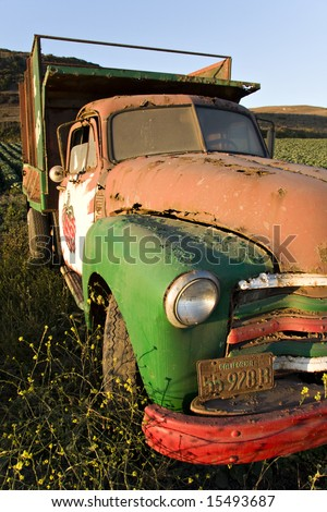 Old truck in an artichoke field near Santa Cruz, California. - stock photo