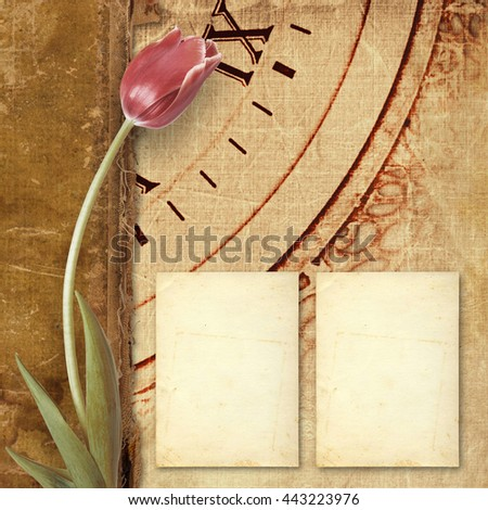 Old vintage album with paper cards and beautiful pink tulips