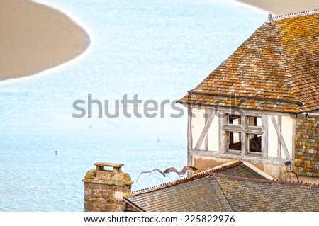 Old vintage house with tiled roof and two gulls on it standing on small river bank in France. Curved narrow river with flaring blue water in background. Living in peaceful and scenic place. - stock photo