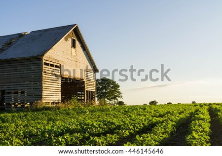Old vintage Midwest barn in the open field on a Summer's afternoon.  Peru, Illinois, U.S.A.. - stock photo