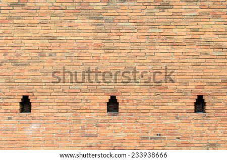 Old wall brick with cavity