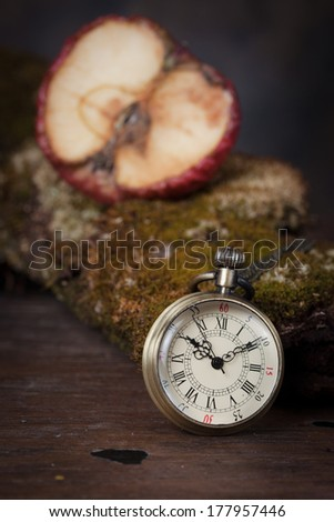 Old watch on  old tree with moss. - stock photo
