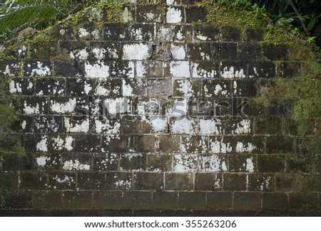 Old weathered wall with moss texture background - stock photo