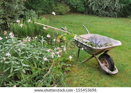 old wheelbarrow and rake in a garden
