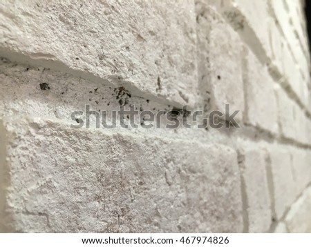 Old white bricks wall