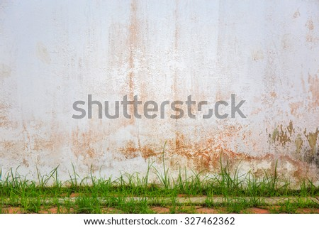 Old white painted wall and pavement with green grass. - stock photo