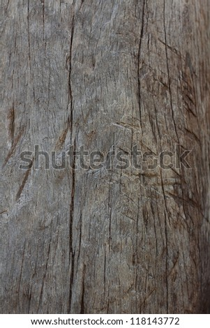 Old wood - stock photo