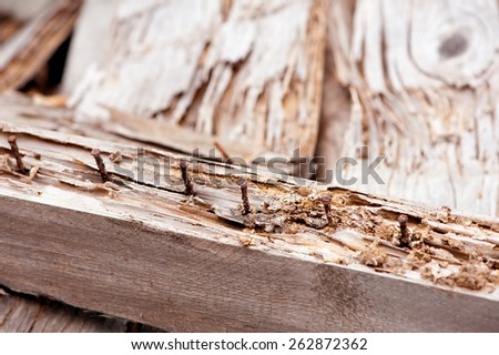 Old wood board with rusted nails