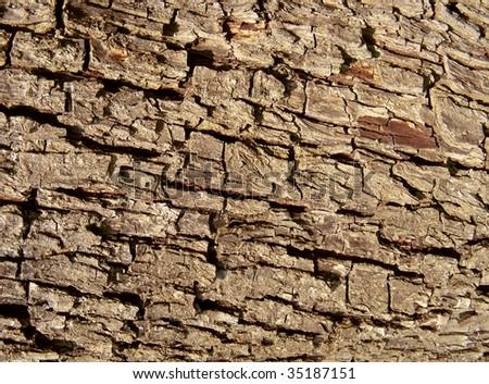 old wood cork close-up - stock photo