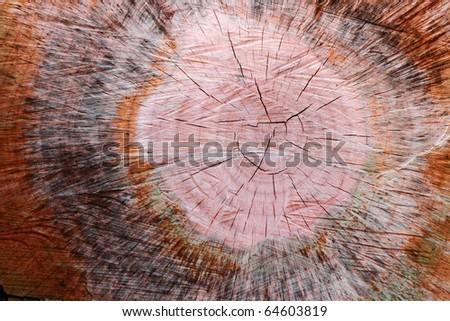 Old wood pattern - stock photo
