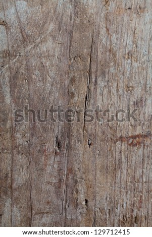 Old wood texture. Background
