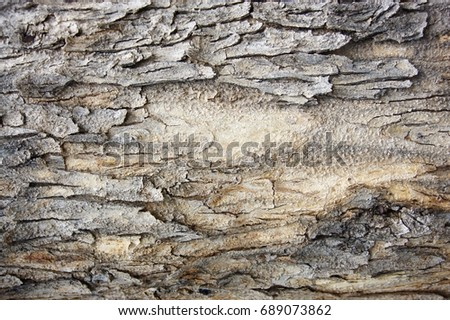 Old wood texture background wallpaper