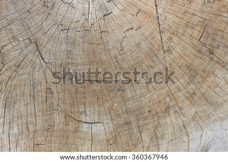 Old wooden background texture - stock photo