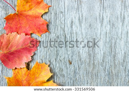 Old wooden background with three autumnal leaves - stock photo