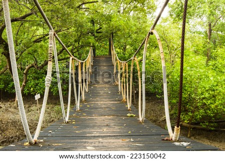Old wooden bridge crossing the mangrove in thailand - stock photo