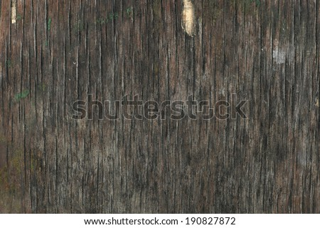 Old wooden crack board - stock photo