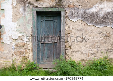 Old, wooden door and concrete and brick wall with grass near