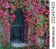 Old wooden door overgrown with ivy in fall colors - stock photo