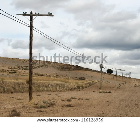 Old wooden electric poles - stock photo