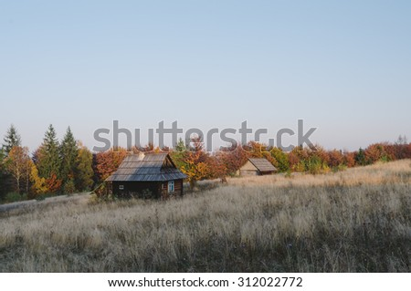 Old wooden house. Autumn landscape in an abandoned village. Color toning, low contrast - stock photo