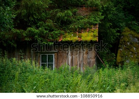 Old wooden house in forest - stock photo