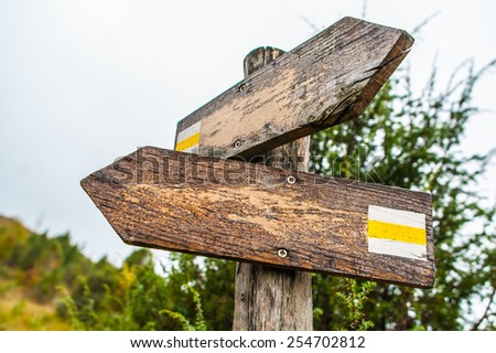 Old wooden narrow shaped blank empty hiking signpost in the woods - stock photo