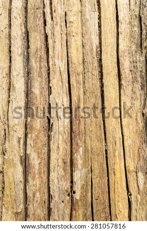 Old wooden plank background.