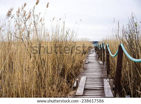Old wooden walkway in the coastal zone on dry grass background - stock photo