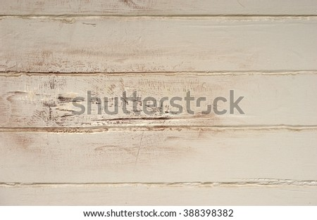 Old wooden wall / Wooden background - stock photo