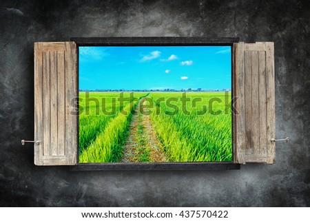 Old wooden windows frame on stone wall and view of green field - stock photo
