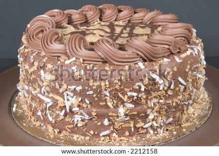 Old world German Chocolate Cake - stock photo