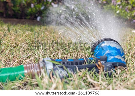 Old worn garden hose spray gun spraying water on green and dry grass, shallow depth of field. Abandoned sprayer left on a thirsty lawn. Low angle view.  - stock photo