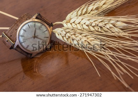 Old wrist watch on a wooden base - stock photo