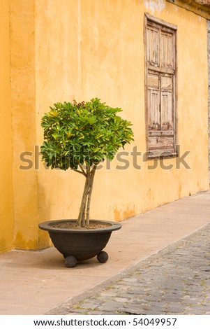 old yellow wall Tenerife - Spain - stock photo