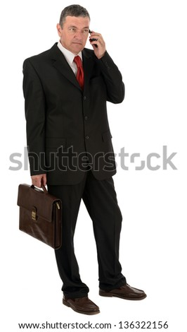 Older businessman with briefcase isolated on white background - stock photo