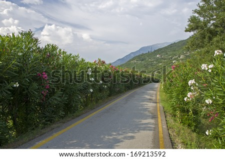 Oleander cycle track by Torbole - Garda lake - stock photo