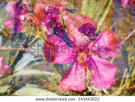 oleander - styled picture with patina texture  - stock photo